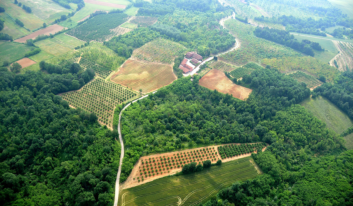 Инвестиции в земельные участки
